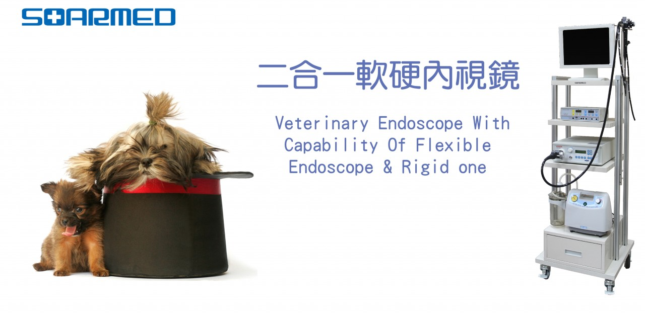 endoscope slide