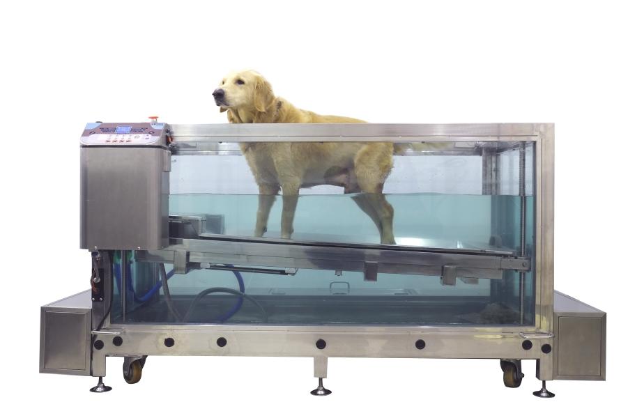 DSCF3052_web_水療跑步機
