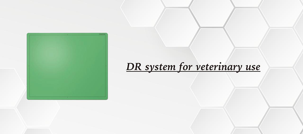 DR 數位影像系統
