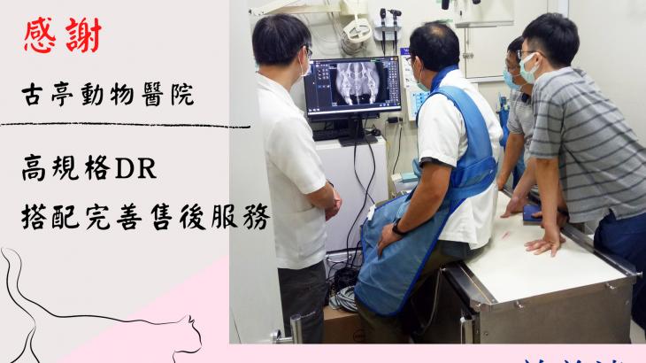 古亭動物醫院_ (4)